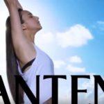 PANTENE001