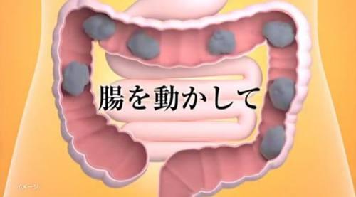 丸薬が腸を動かして