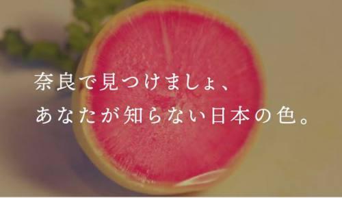奈良で見つけましょ、あなたの知らない日本の色。