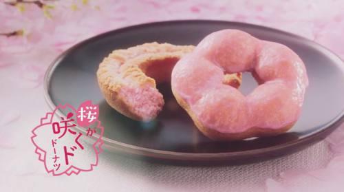 さくら咲くド ドーナッツ