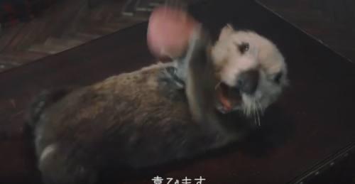 春きらきらくじCM4